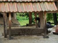 Farma-hurá za zvířátky!